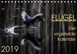 Flügel 2019 Der vogelwilde Kalender (Tischkalender 2019 DIN A5 quer) von van der Wiel,  Irma