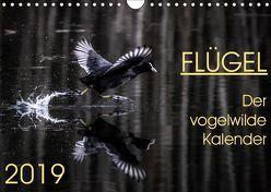 Flügel 2019 Der vogelwilde Kalender (Wandkalender 2019 DIN A4 quer) von van der Wiel,  Irma
