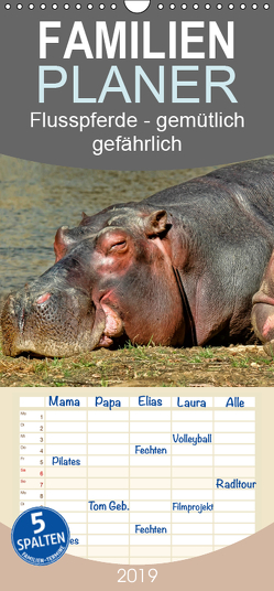 Flusspferde – gemütlich gefährlich – Familienplaner hoch (Wandkalender 2019 , 21 cm x 45 cm, hoch) von Roder,  Peter