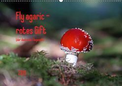 Fly agaric – rotes Gift (Wandkalender 2019 DIN A2 quer) von Flori0