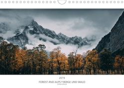 FOREST AND ALPS – BERGE UND WALD 2020 (Wandkalender 2020 DIN A4 quer) von Köhler,  Stefan