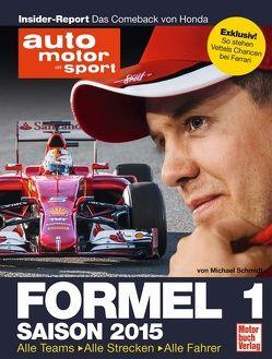 Formel 1 – Saison 2015 von Schmidt,  Michael