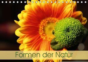 Formen der Natur (Tischkalender 2018 DIN A5 quer) von Eisele,  Horst