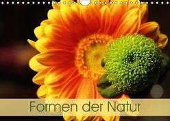 Formen der Natur (Wandkalender 2018 DIN A4 quer) von Eisele,  Horst