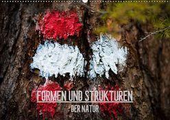 Formen und Strukturen der Natur (Wandkalender 2019 DIN A2 quer) von Grimm Photography,  Mike