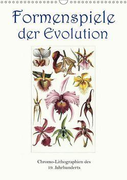 Formenspiele der Evolution. Chromolithographien des 19. Jahrhunderts (Wandkalender 2019 DIN A3 hoch) von Galle,  Jost