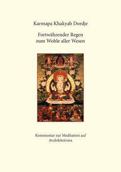Fortwährender Regen zum Wohle aller Wesen von Karmapa Khakyab Dordje, Lama Tilmann Lhündrup