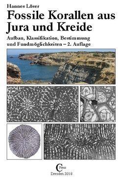 Fossile Korallen aus Jura und Kreide von Löser,  Hannes