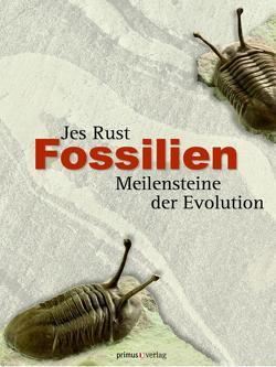 Fossilien von Rust,  Jes