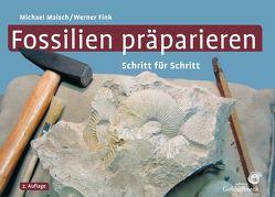 Fossilien präparieren von Fink,  Werner, Maisch,  Michael