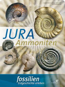 """Fossilien Sonderheft """"Jura-Ammoniten"""" von Redaktion Fossilien"""