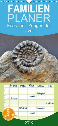 Fossilien – Zeugen der Urzeit – Familienplaner hoch (Wandkalender 2019 , 21 cm x 45 cm, hoch) von Wagner,  Renate