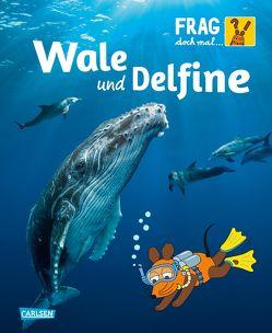 Frag doch mal … die Maus: Wale und Delfine von Brandstetter,  Johann, Englert,  Sylvia