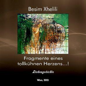 Fragmente eines tollkühnen Herzens …! von Xhelili,  Besim