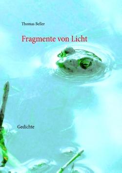 Fragmente von Licht von Beller,  Thomas