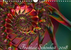 Fraktale Schönheit 2018 (Wandkalender 2018 DIN A4 quer) von M. Burkhardt,  Shako