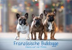 Französische Bulldogge – Clowns auf vier Pfoten (Wandkalender 2021 DIN A2 quer) von Wobith Photography - FotosVonMaja,  Sabrina
