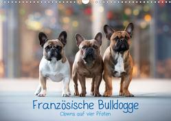 Französische Bulldogge – Clowns auf vier Pfoten (Wandkalender 2021 DIN A3 quer) von Wobith Photography - FotosVonMaja,  Sabrina