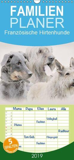 Französische Hirtenhunde 2019 – Familienplaner hoch (Wandkalender 2019 , 21 cm x 45 cm, hoch) von Redecker,  Andrea