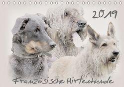 Französische Hirtenhunde 2019 (Tischkalender 2019 DIN A5 quer) von Redecker,  Andrea