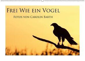 Frei wie ein Vogel (Wandkalender 2018 DIN A2 quer) von Barth,  Carolin