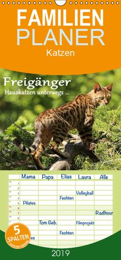 Freigänger – Hauskatzen unterwegs – Familienplaner hoch (Wandkalender 2019 , 21 cm x 45 cm, hoch) von Schmäing,  Werner