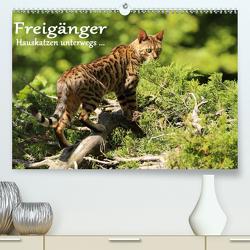 Freigänger – Hauskatzen unterwegs (Premium, hochwertiger DIN A2 Wandkalender 2021, Kunstdruck in Hochglanz) von Schmäing,  Werner