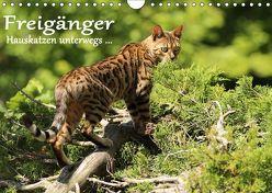 Freigänger – Hauskatzen unterwegs (Wandkalender 2019 DIN A4 quer) von Schmäing,  Werner