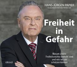 Freiheit in Gefahr von Diekmann,  Michael J., Papier,  Hans Jürgen