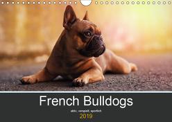 French Bulldog aktiv, verspielt, sportlich (Wandkalender 2019 DIN A4 quer) von Block,  Janina