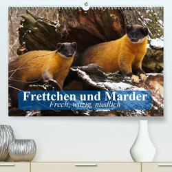 Frettchen und Marder. Frech, witzig, niedlich (Premium, hochwertiger DIN A2 Wandkalender 2020, Kunstdruck in Hochglanz) von Stanzer,  Elisabeth