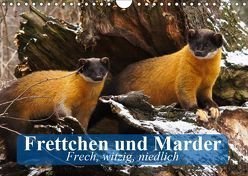 Frettchen und Marder. Frech, witzig, niedlich (Wandkalender 2019 DIN A4 quer) von Stanzer,  Elisabeth