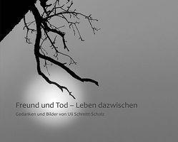 Freund und Tod – Leben dazwischen von Schmitt-Scholz,  Uli