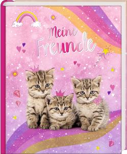 Freundebuch – Cosmic School – Meine Freunde (Kätzchen)