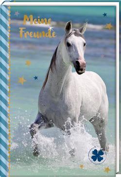 Freundebuch – Pferdefreunde – Pferd am Meer von Roß,  Thea, Slawik,  Christiane