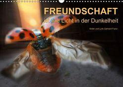 Freundschaft (Wandkalender 2019 DIN A3 quer) von Franz,  Gerhard