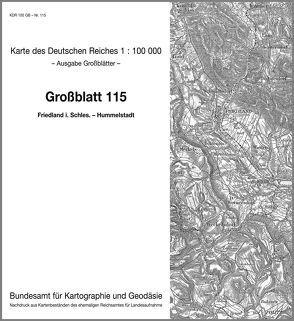 Friedland in Schlesien – Hummelstadt