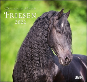 Friesen 2022 – Edle Pferde – Fotografiert von Christiane Slawik – DUMONT-Wandkalender – Format 38,0 x 35,5 cm von Slawik,  Christiane