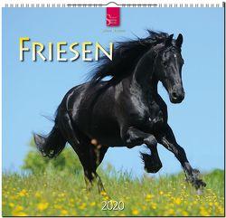 Friesen von Stuewer,  Sabine