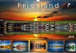 Friesland, wo die Natur sich spiegelt (Wandkalender 2019 DIN A3 quer) von Roder,  Peter