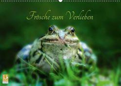 Frösche zum Verlieben (Wandkalender 2019 DIN A2 quer) von Gawlik,  Kathrin