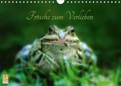 Frösche zum Verlieben (Wandkalender 2019 DIN A4 quer) von Gawlik,  Kathrin