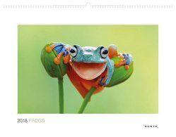 Frogs 2018 von KUNTH Verlag