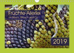 Früchte-Allerlei an Baum, Strauch und Co. (Wandkalender 2019 DIN A4 quer) von Keller,  Angelika
