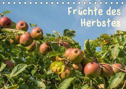 Früchte des Herbstes (Tischkalender 2019 DIN A5 quer) von Seidl,  Hans