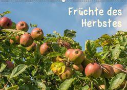 Früchte des Herbstes (Wandkalender 2019 DIN A2 quer)