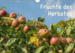 Früchte des Herbstes (Wandkalender 2019 DIN A4 quer)