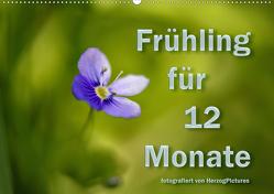 Frühling für 12 Monate (Wandkalender 2020 DIN A2 quer) von HerzogPictures