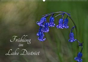 Frühling im Lake District / Nr. 205 (Wandkalender 2020 DIN A2 quer) von Uppena,  Leon