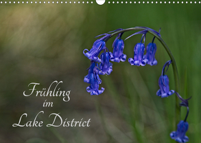 Frühling im Lake District / Nr. 205 (Wandkalender 2020 DIN A3 quer) von Uppena,  Leon
